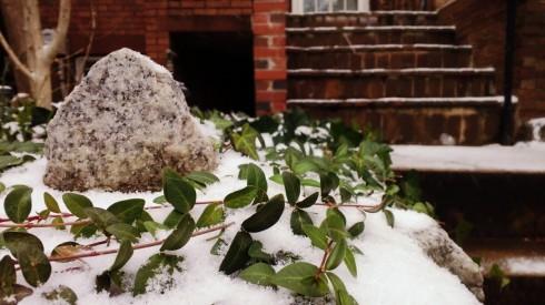 bloomingdale snow